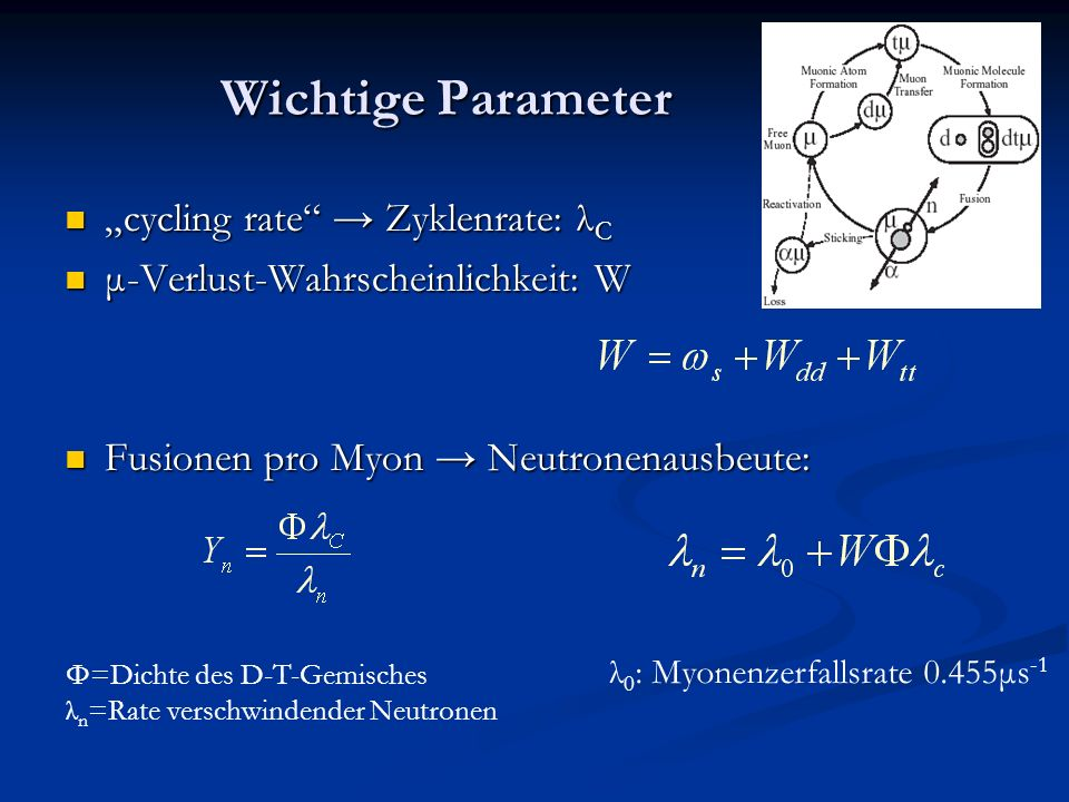 "Wichtige Parameter ""cycling rate → Zyklenrate: λC"