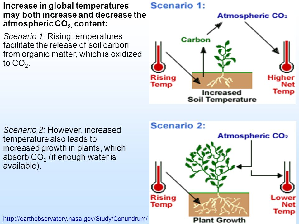 Increase in global temperatures may both increase and decrease the atmospheric CO2. content:
