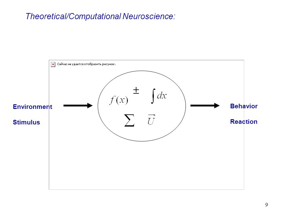 Theoretical/Computational Neuroscience: