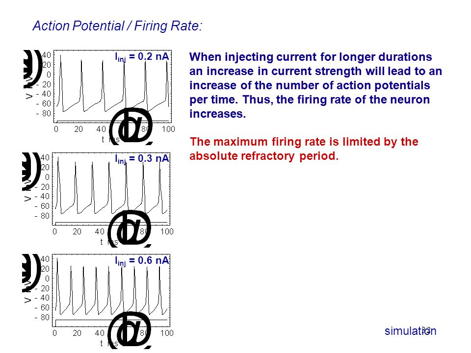 Action Potential / Firing Rate: