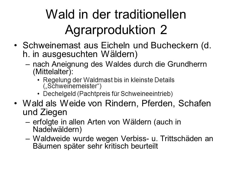 Wald in der traditionellen Agrarproduktion 2