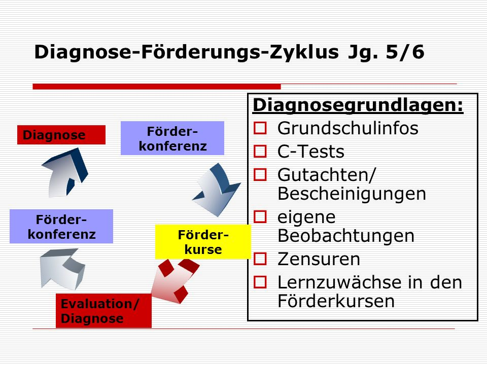 Diagnose-Förderungs-Zyklus Jg. 5/6