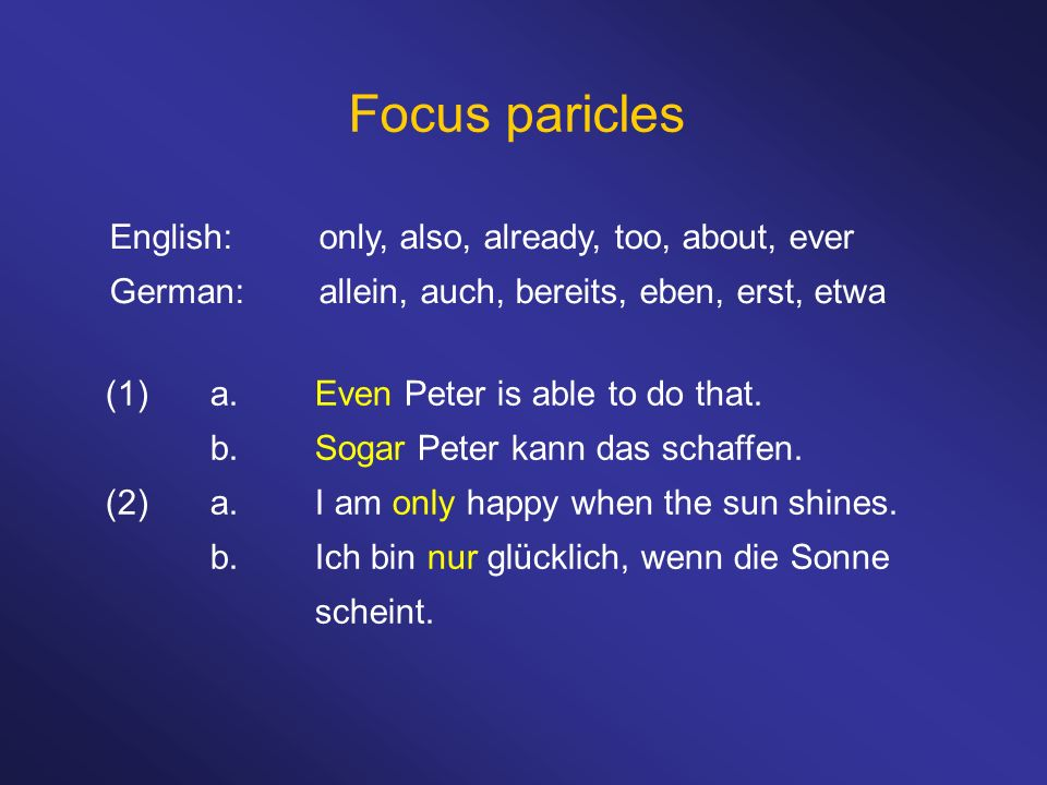 Focus paricles English: only, also, already, too, about, ever