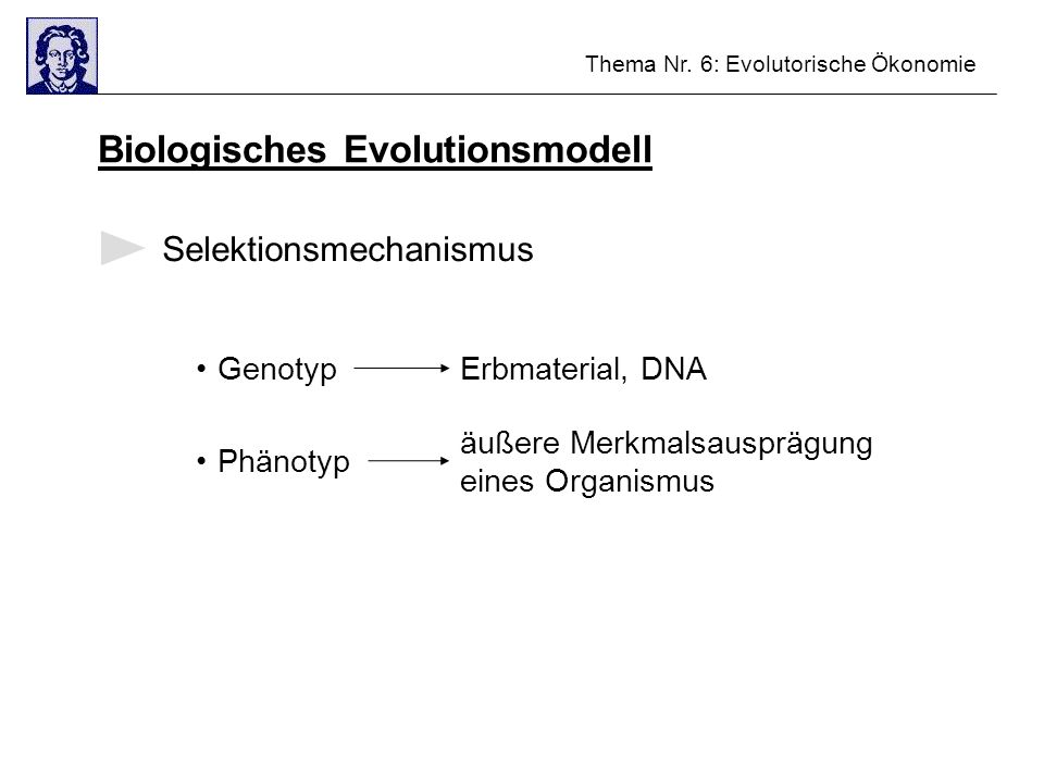 Biologisches Evolutionsmodell