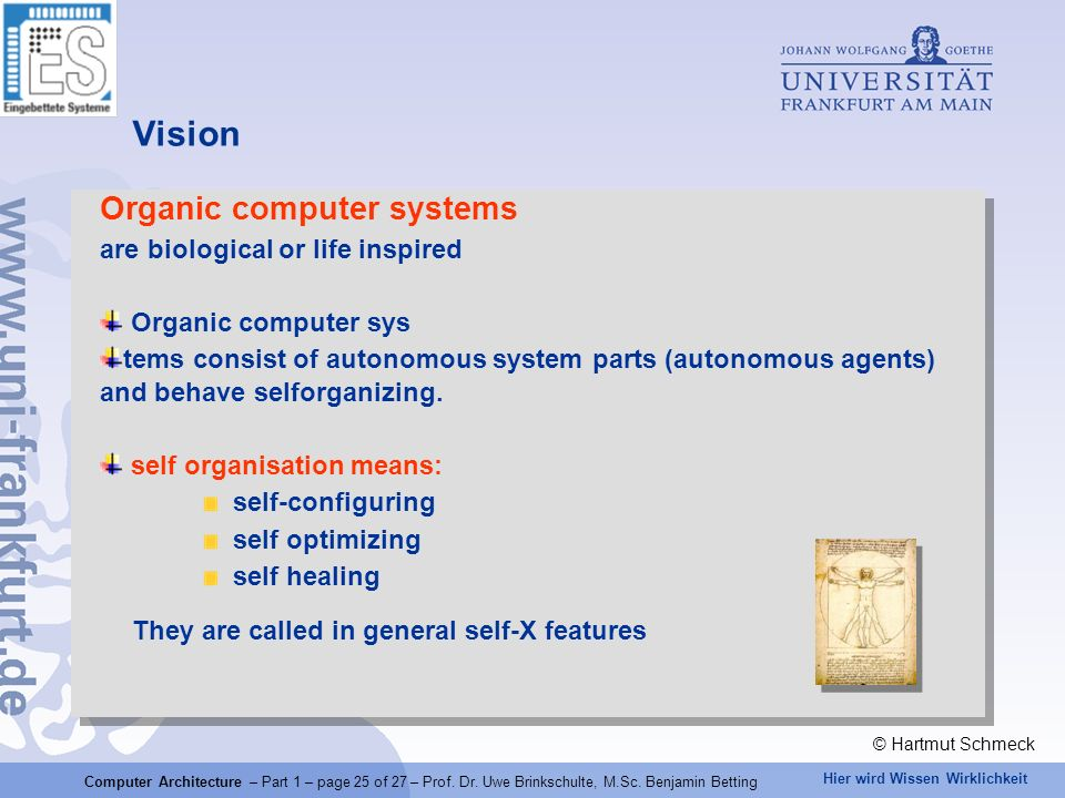 Vision Organic computer systems are biological or life inspired