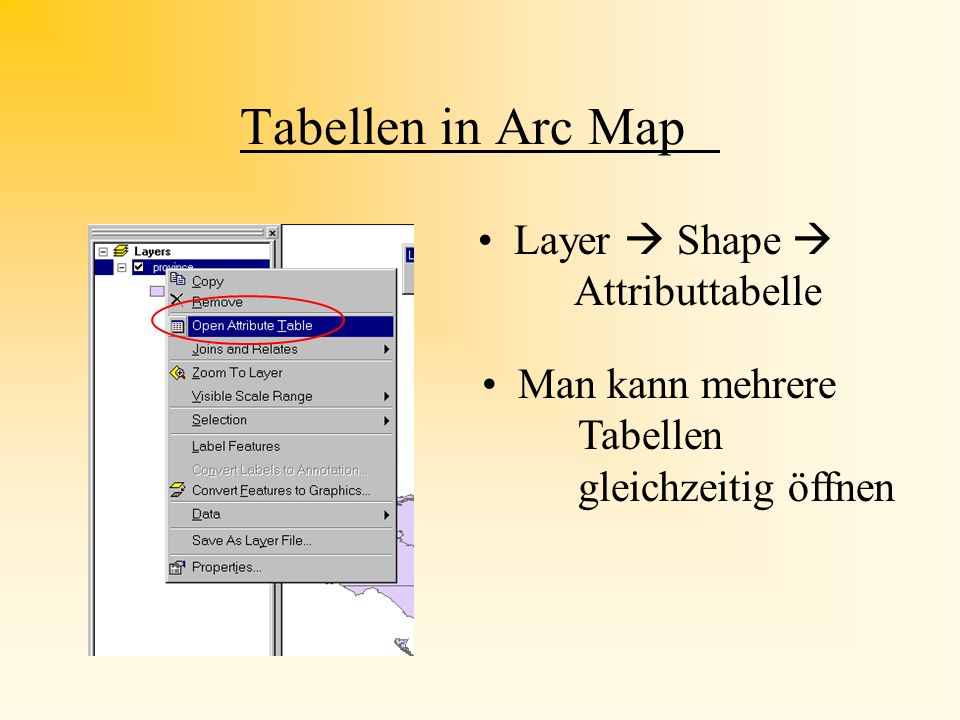 Tabellen in Arc Map Layer  Shape  Attributtabelle