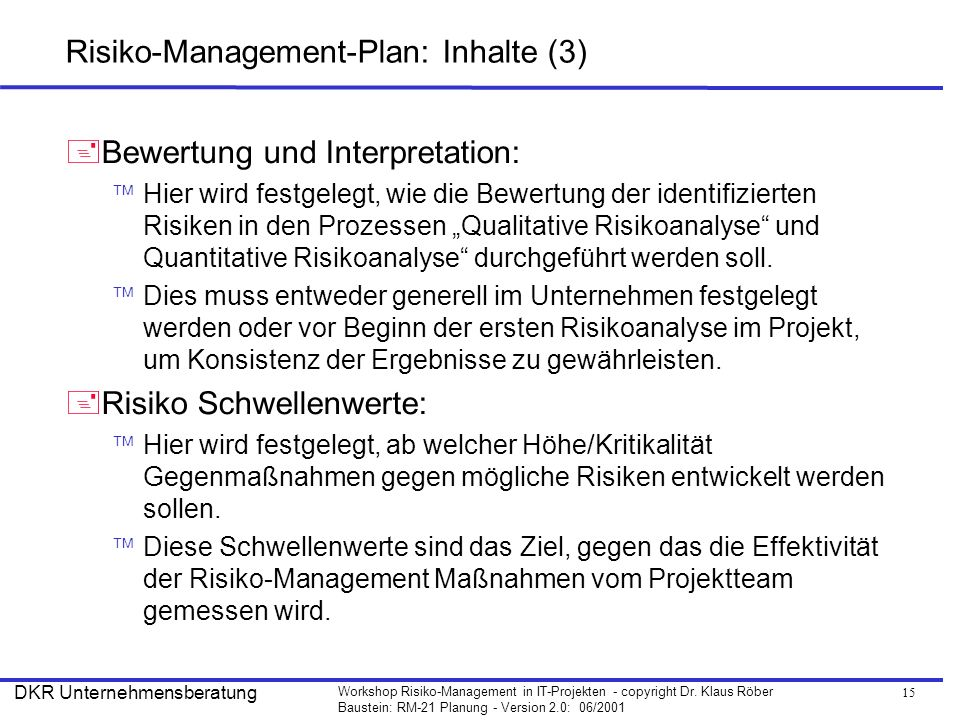 Risiko-Management-Plan: Inhalte (3)