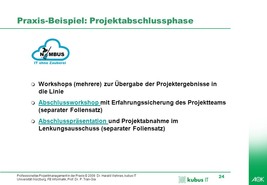 Professionelles Projektmanagement in der Praxis - ppt video online ...