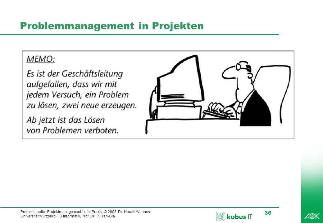 Problemmanagement in Projekten