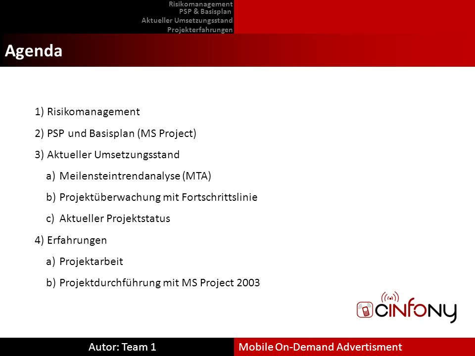Agenda Risikomanagement PSP und Basisplan (MS Project)