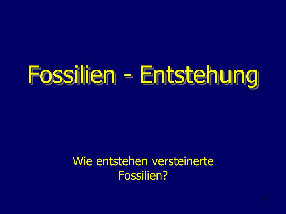 Fossilien - Entstehung