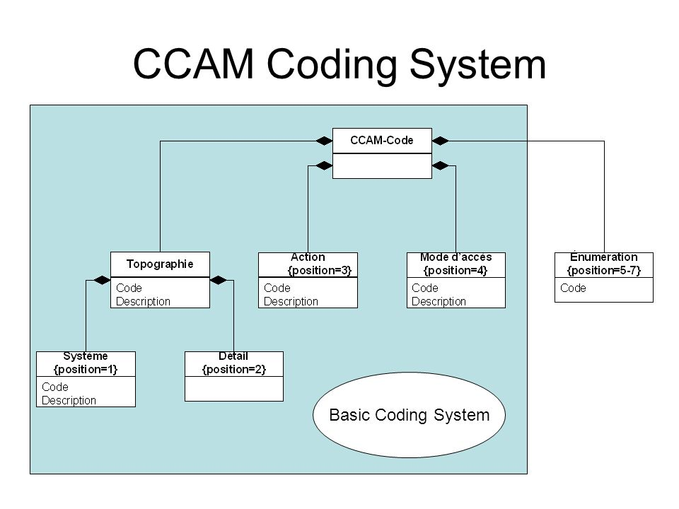 CCAM Coding System Basic Coding System