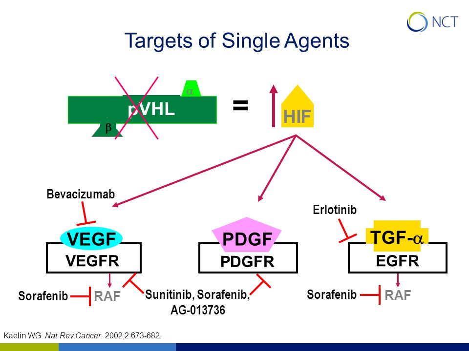 = Targets of Single Agents pVHL HIF VEGF PDGF TGF-a VEGFR PDGFR EGFR