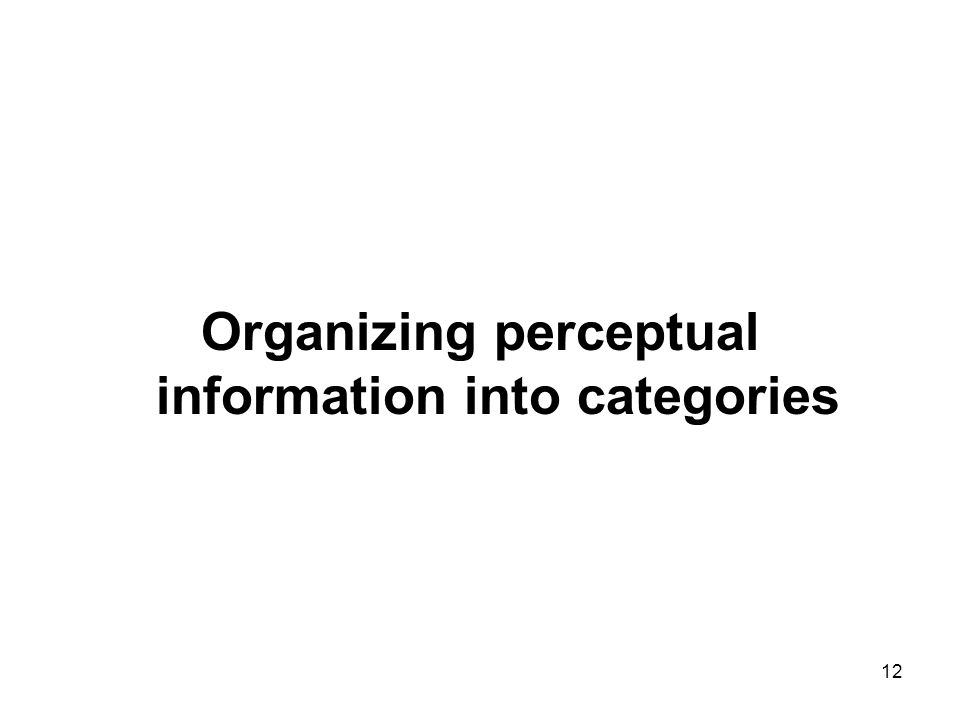 Organizing perceptual information into categories