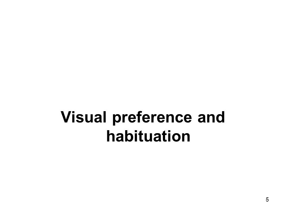 Visual preference and habituation