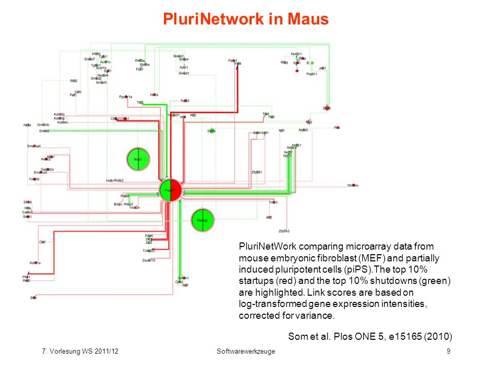 PluriNetwork in Maus PluriNetWork comparing microarray data from