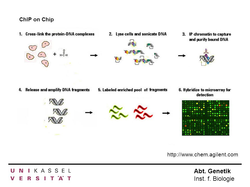 ChIP on Chip http://www.chem.agilent.com