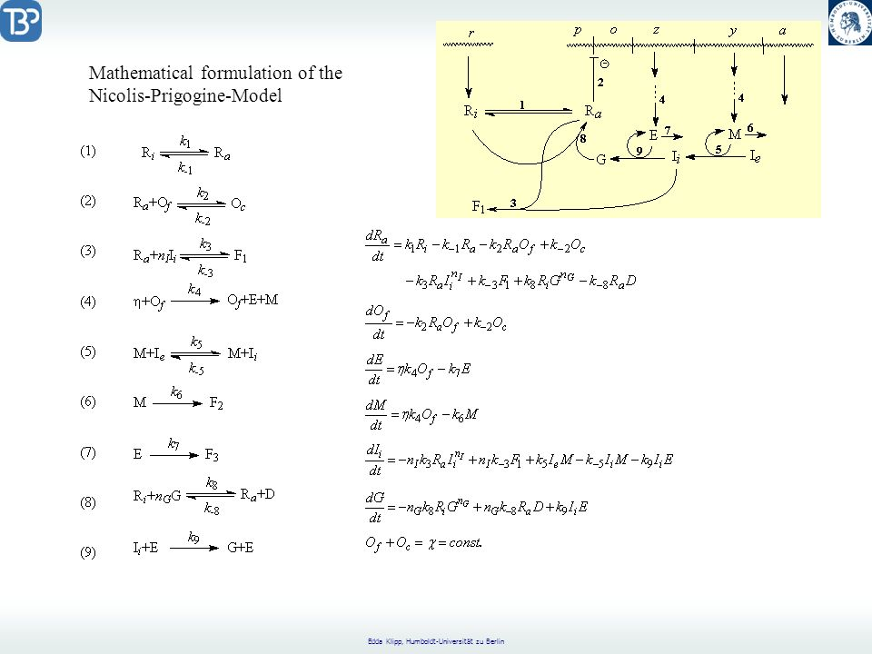 Mathematical formulation of the