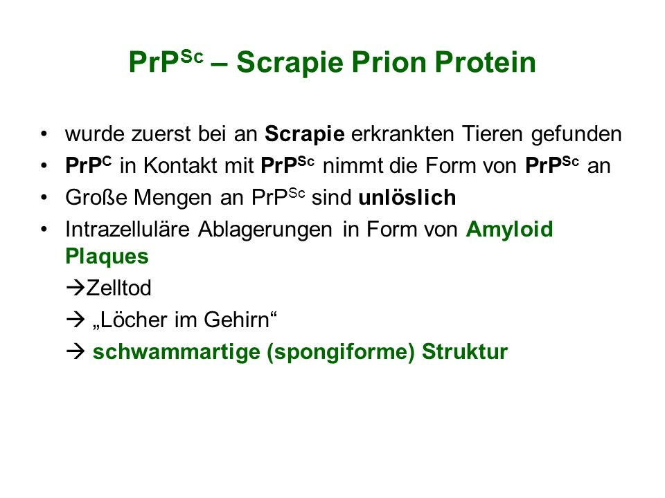 PrPSc – Scrapie Prion Protein