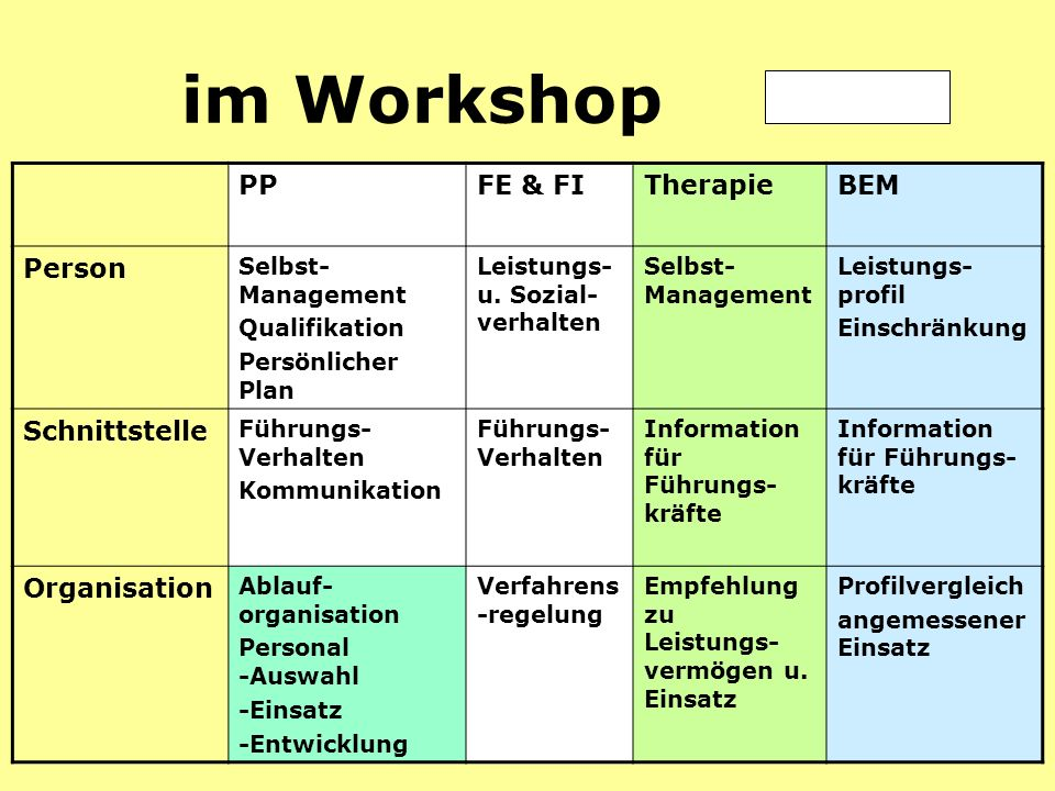 im Workshop PP FE & FI Therapie BEM Person Schnittstelle Organisation