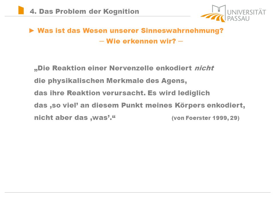 4. Das Problem der Kognition