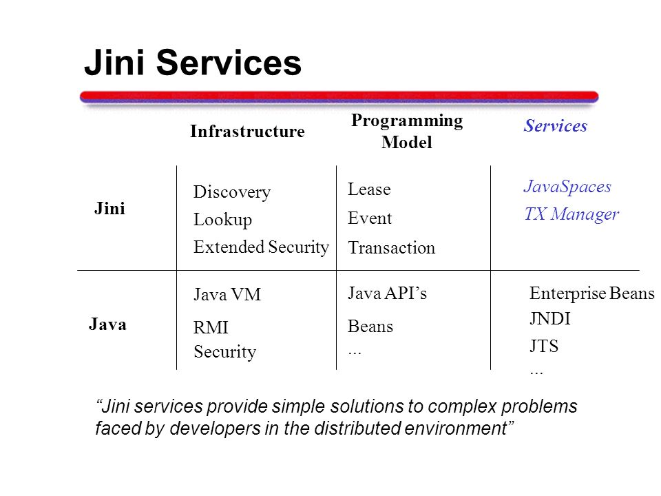Jini Services Java Infrastructure Programming Model Services RMI