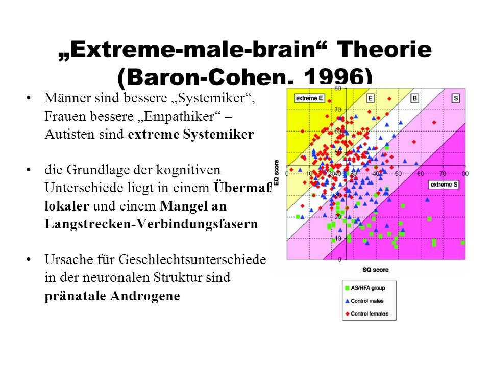 """Extreme-male-brain Theorie (Baron-Cohen, 1996)"