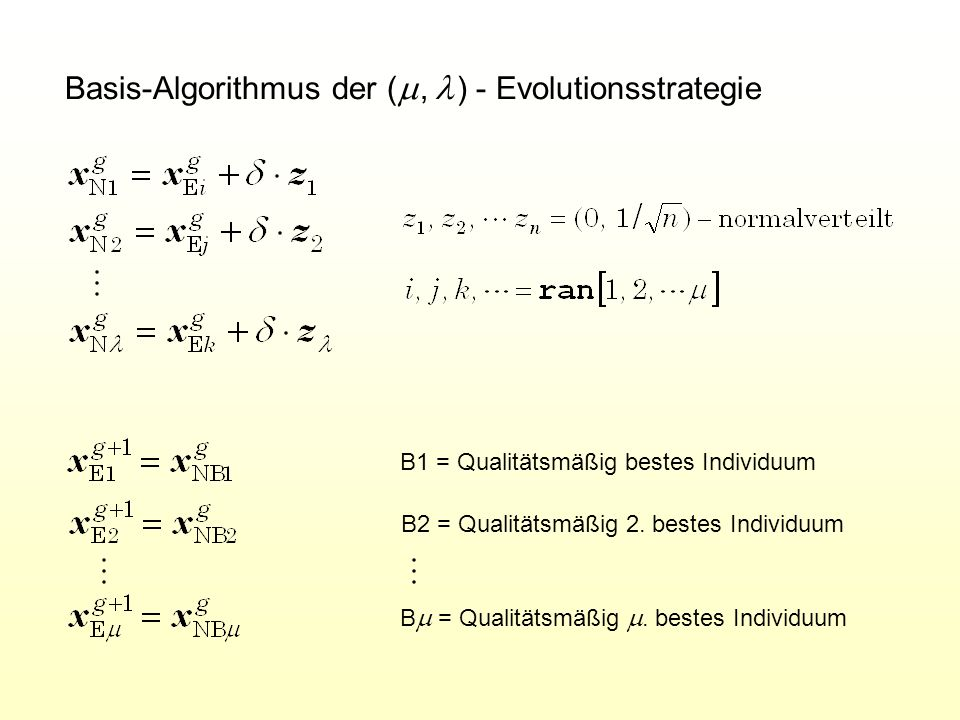 Basis-Algorithmus der (m , l ) - Evolutionsstrategie
