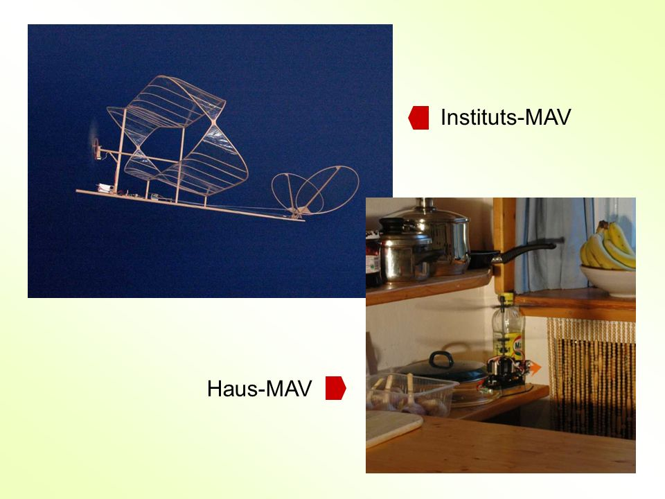 Instituts-MAV Haus-MAV