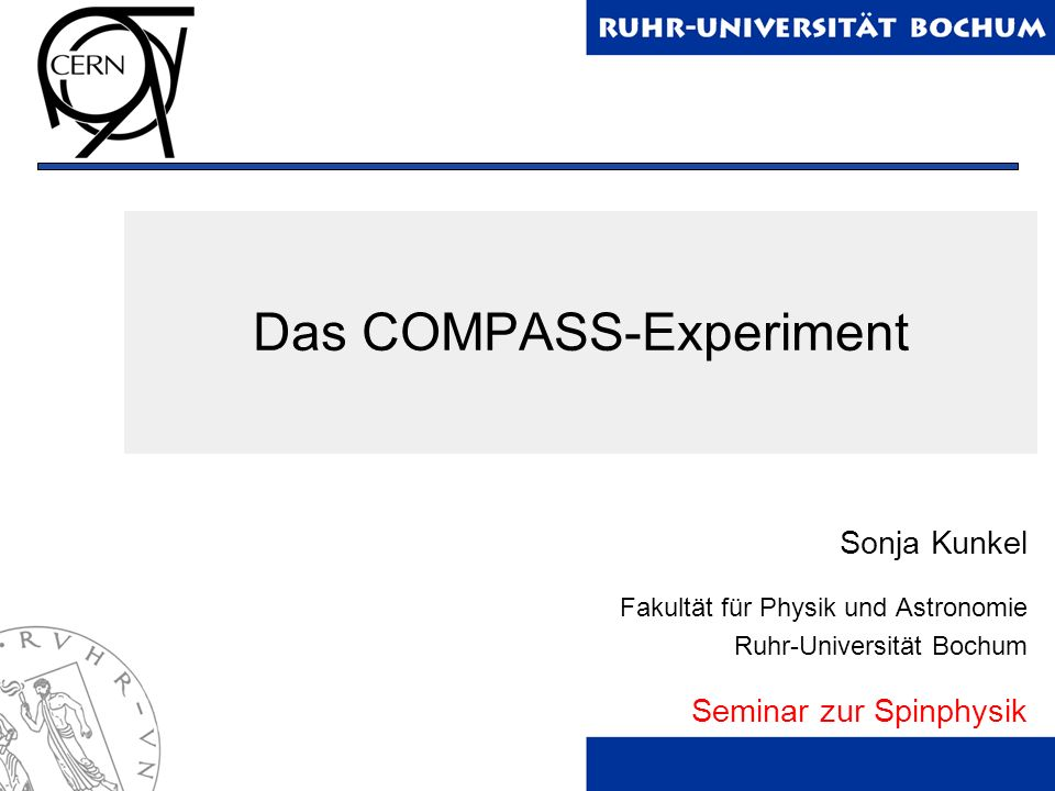 Das COMPASS-Experiment
