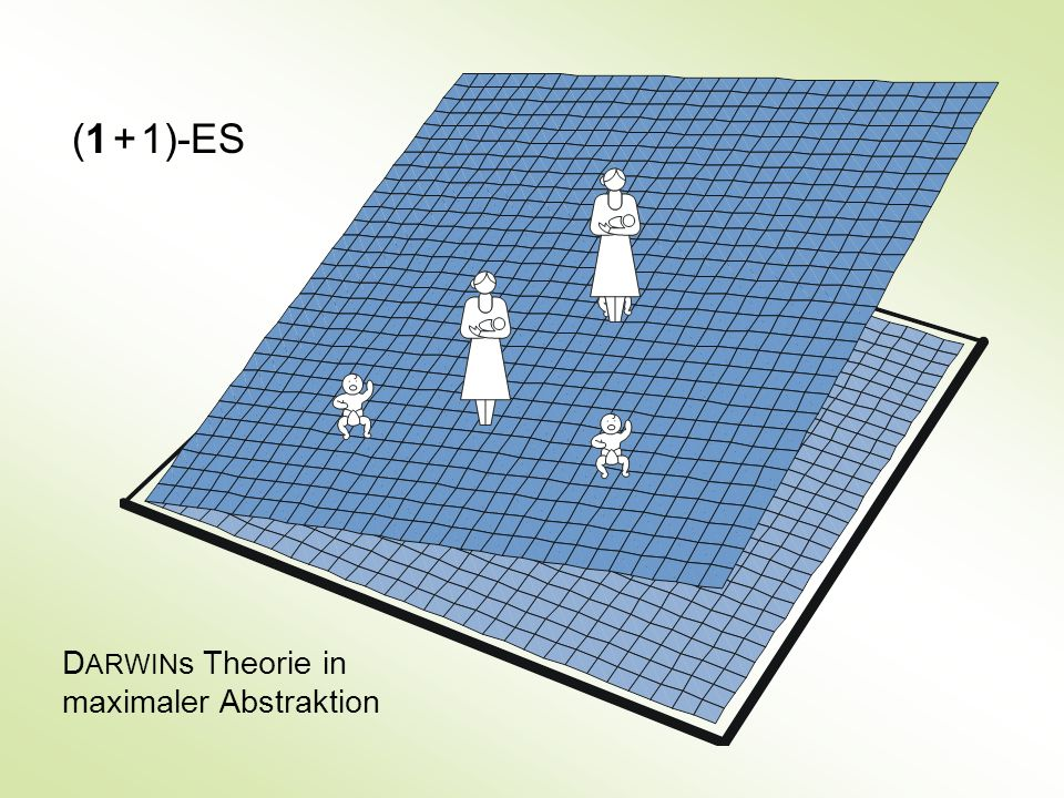 (1 + 1)-ES DARWINs Theorie in maximaler Abstraktion