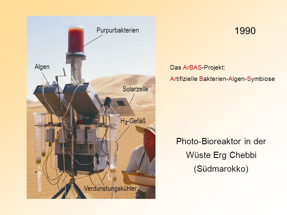 Photo-Bioreaktor in der Wüste Erg Chebbi (Südmarokko)