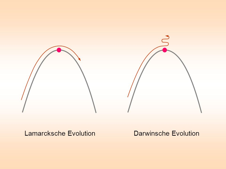 Lamarcksche Evolution