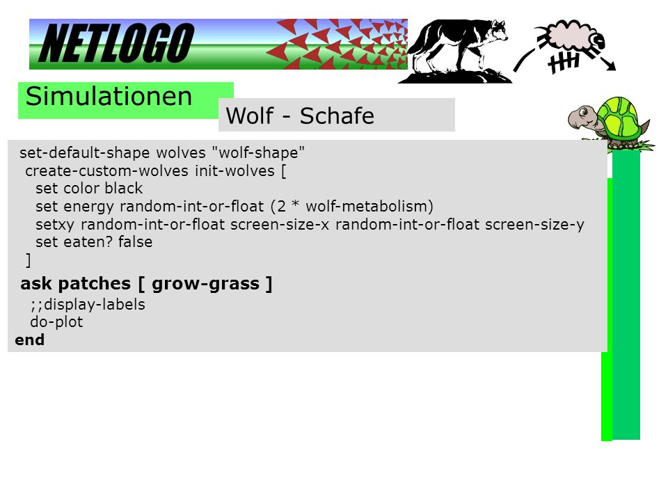 Simulationen Wolf - Schafe ask patches [ grow-grass ]