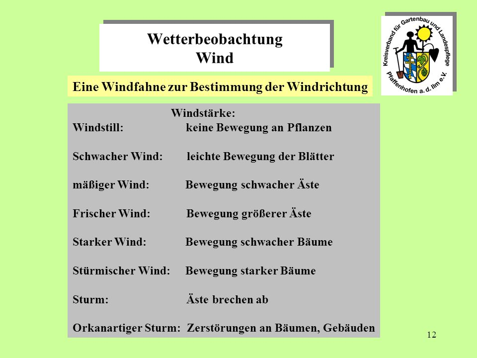 Wetterbeobachtung Wind