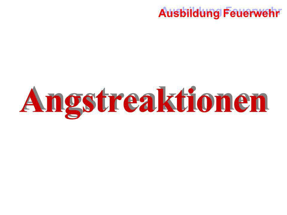 Angstreaktionen
