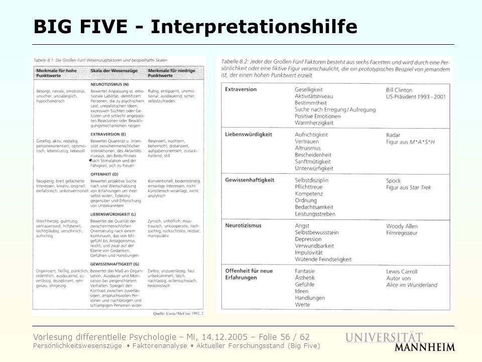 BIG FIVE - Interpretationshilfe