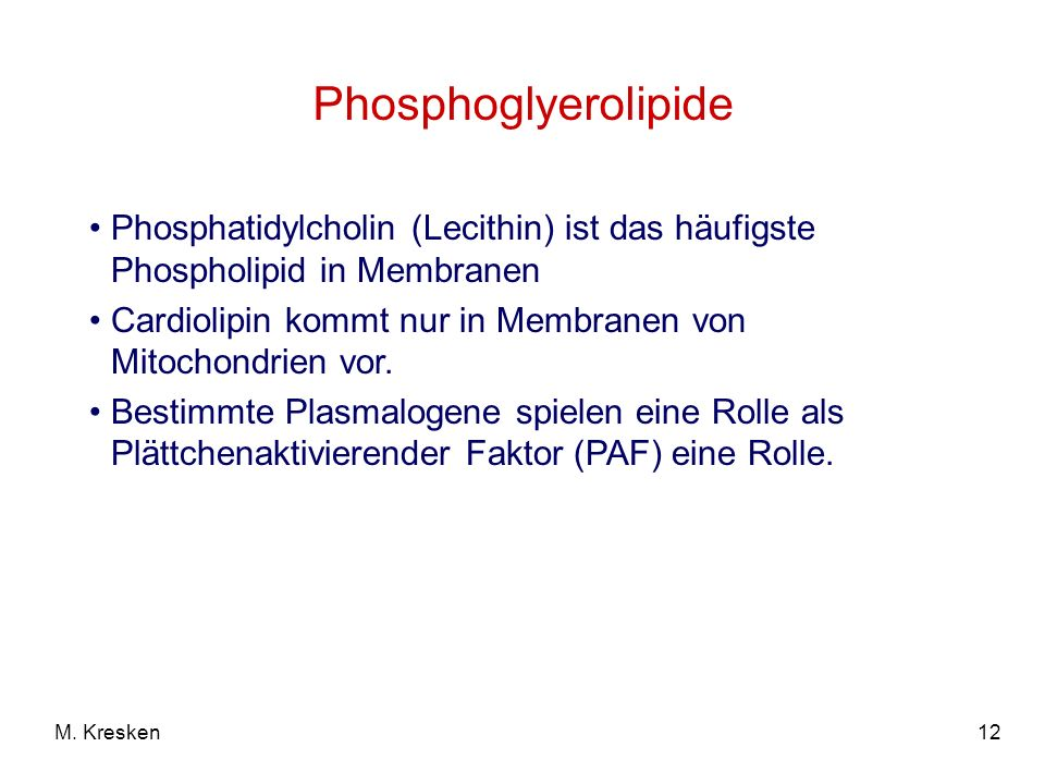 Phosphoglyerolipide Phosphatidylcholin (Lecithin) ist das häufigste Phospholipid in Membranen.