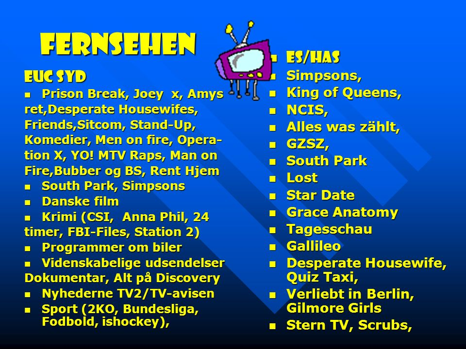 Fernsehen ES/Has EUC Syd Simpsons, King of Queens, NCIS,