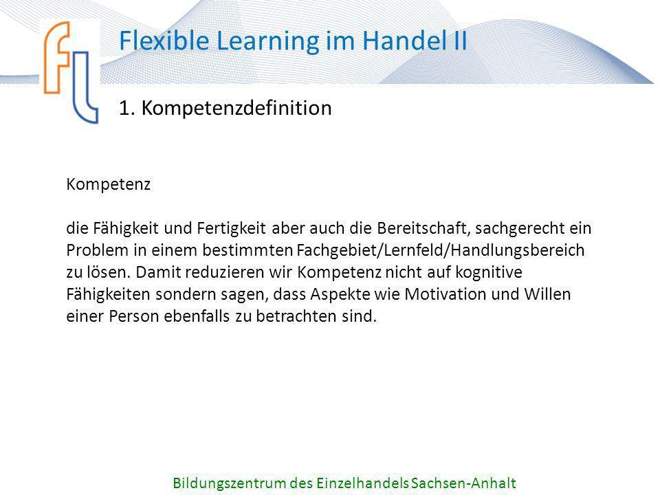 Kompetenzworkshop 23. Mai 2012 Kompetenz im BZE Sachsen-Anhalt - ppt ...