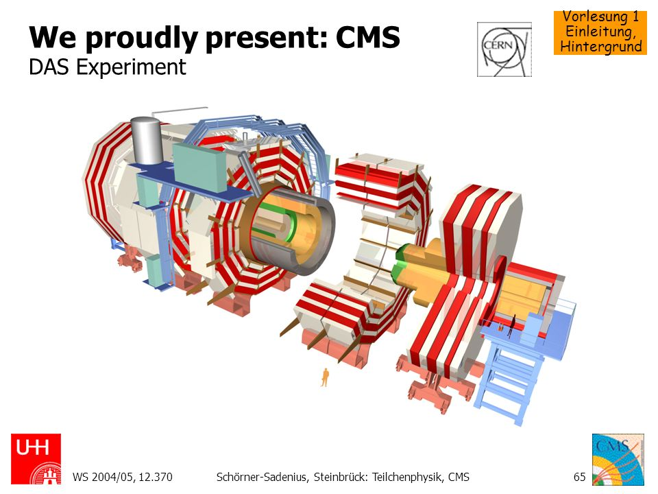 We proudly present: CMS DAS Experiment