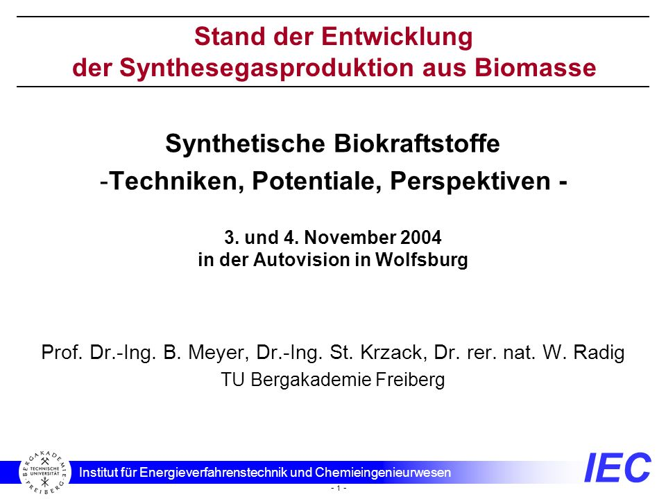der Synthesegasproduktion aus Biomasse
