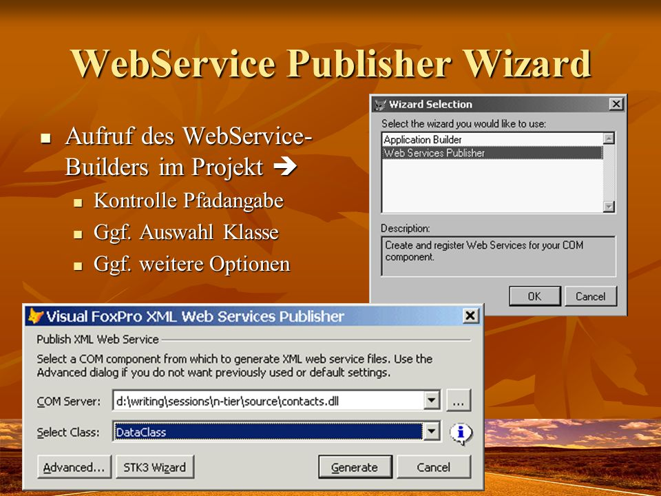 WebService Publisher Wizard