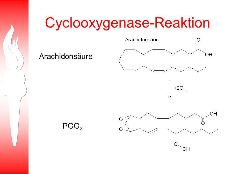 Cyclooxygenase-Reaktion