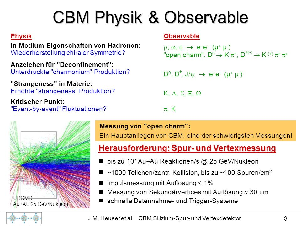 CBM Physik & Observable