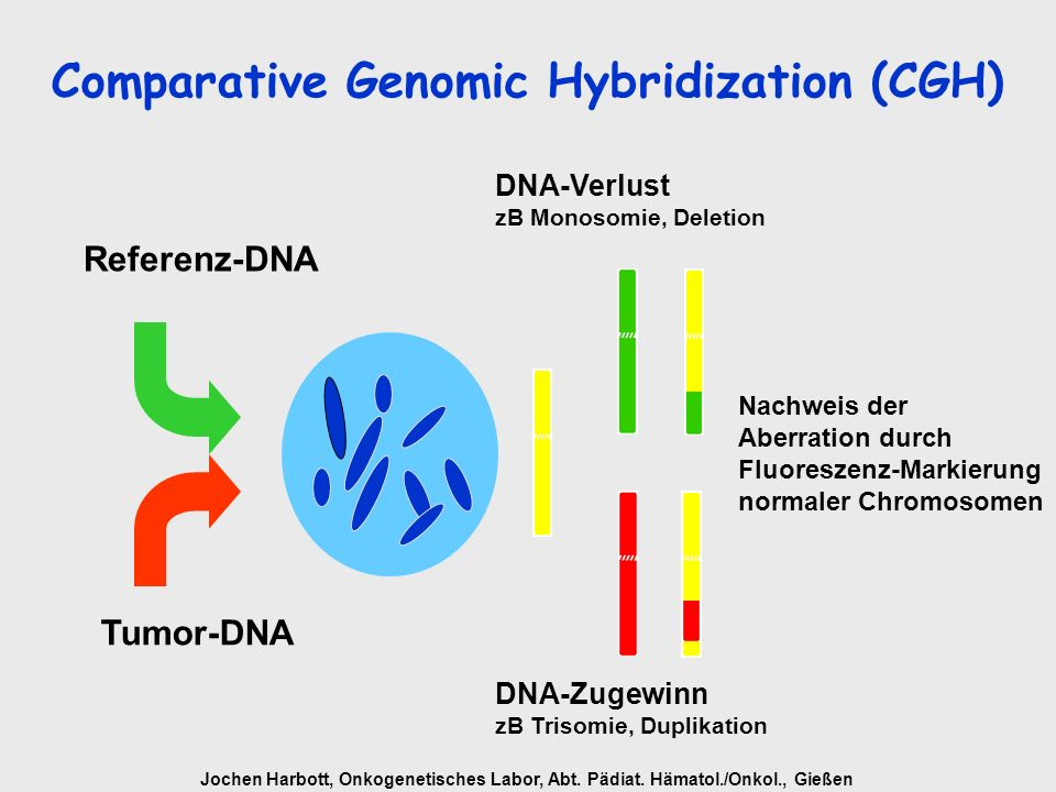 Comparative Genomic Hybridization (CGH)