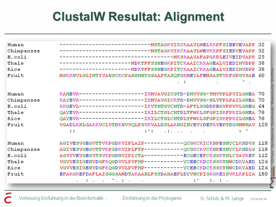 ClustalW Resultat: Alignment