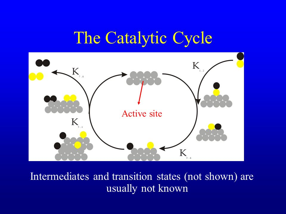 Intermediates and transition states (not shown) are usually not known