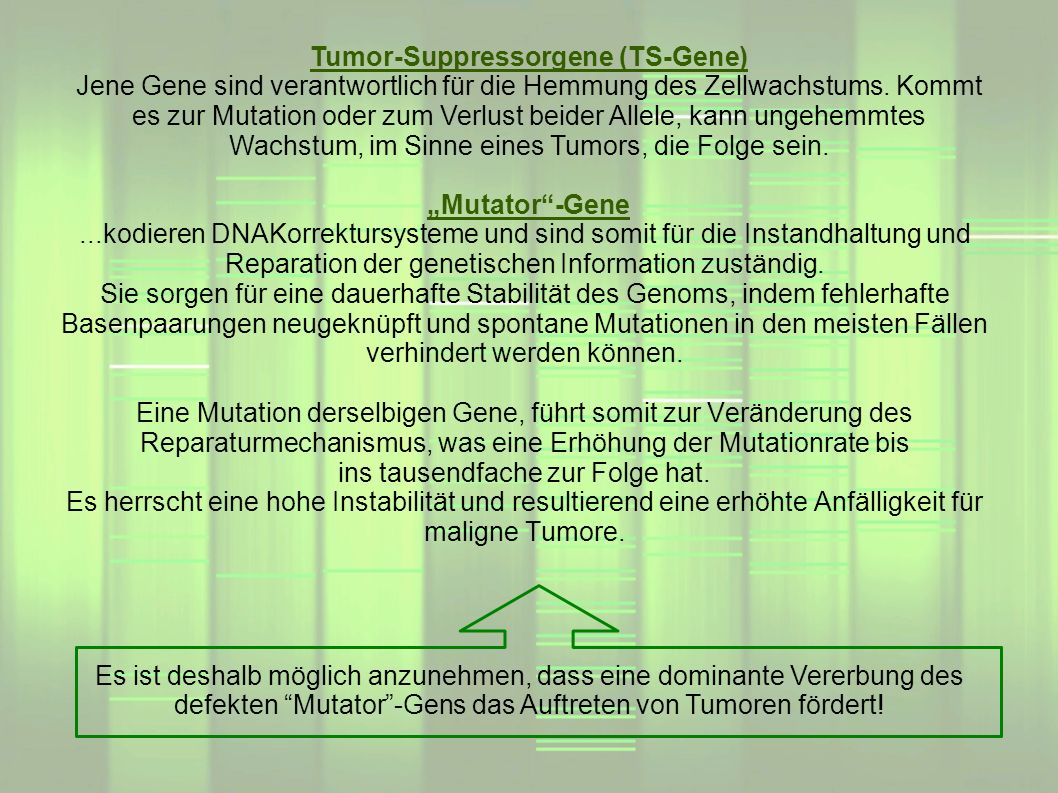 Tumor-Suppressorgene (TS-Gene)