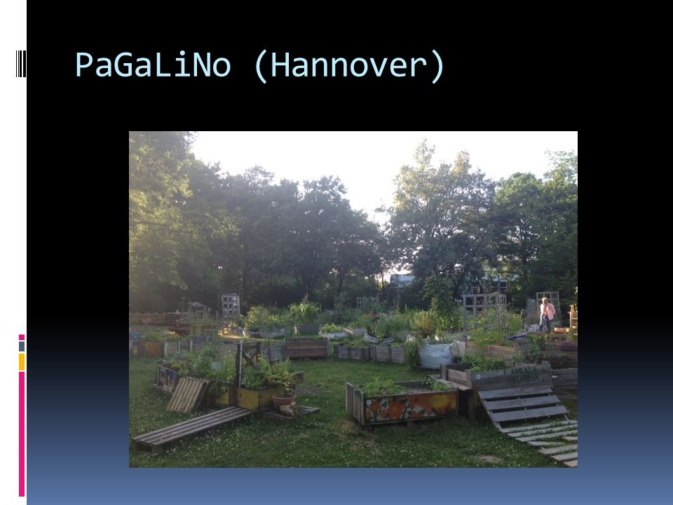 PaGaLiNo (Hannover) Another mobile garden, in the centre of the city.